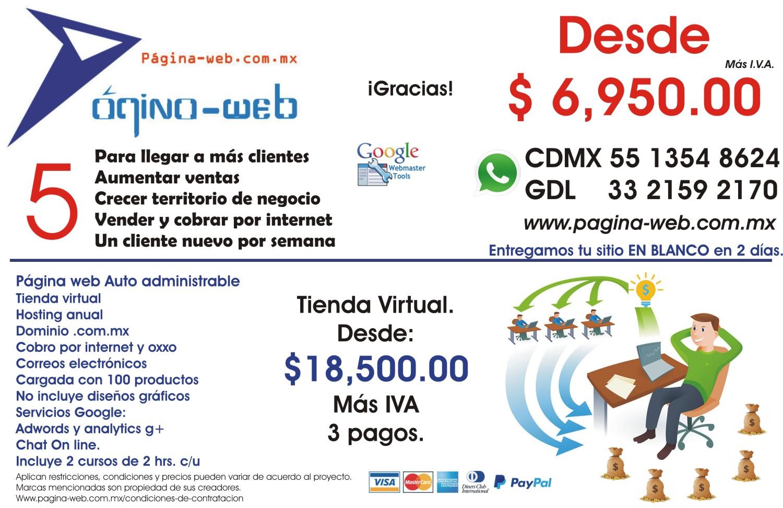 pagina-web-6950-front